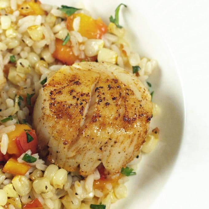 Summer Scallops Recipes — Dishmaps