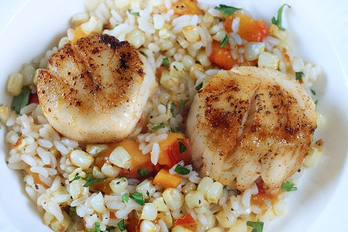 pan seared scallops sitting on a bed of rice and white corn.  seasoned with peaches and cilantro served on a white plate
