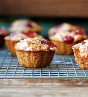 cranberry sauce muffin