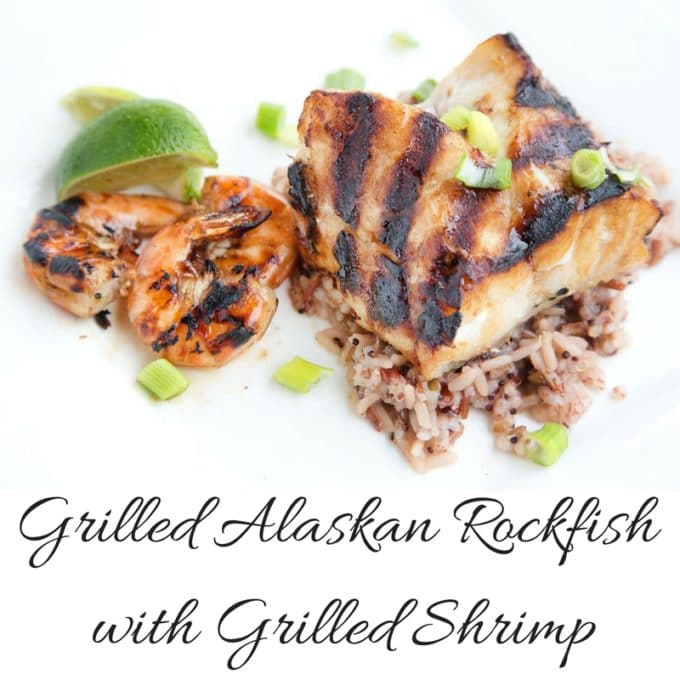 Grilled Alaskan Rockfish on wild rice with grilled shrimp sitting on a square white plate with lime wedges as garnish.