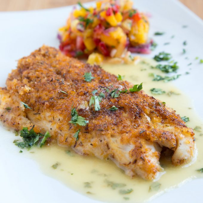 close up of cajun style Florida snapper with a lime margarita sauce, garnished with chopped parsley with fruit salsa blurred in the background on a white plate