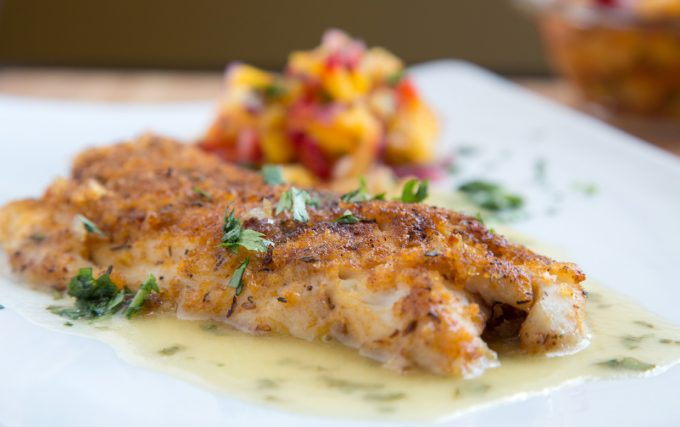 side view of cajun style florida snapper with a lime margarita sauce, garnished with chopped parsley with fruit salsa blurred in the background on a white plate