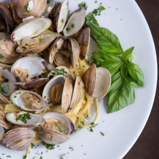 white bowl with steamed clams on linguine with a sprig of basil