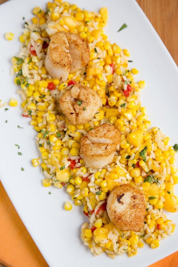 four pan seared scallops on a bed of rice and sweet corn on a white platter