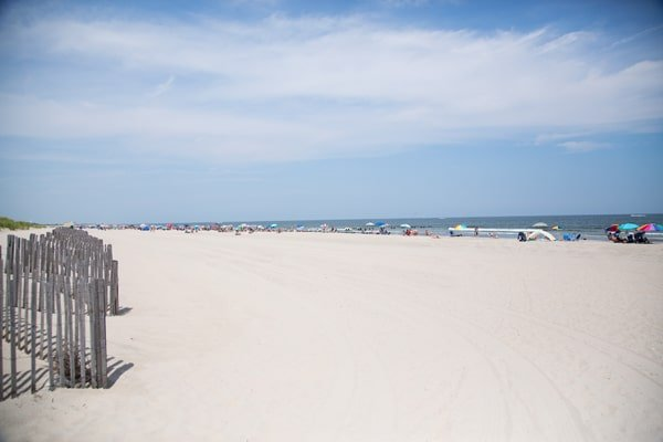 Follow the gull to Ocean Drive  and Stone Harbor, New Jersey