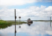 Boggy Creek Airboat Ride – Experience Florida's Natural Beauty