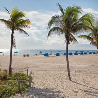 view of Pompano beach with palm trees and beach cabanas by the water