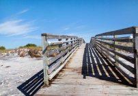 Honeymoon Island is a Great Beach Getaway! #VisitFlorida