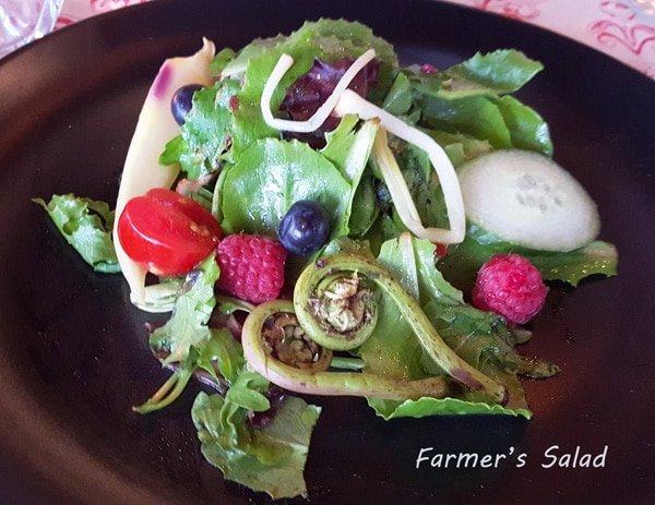 farmers salad on a black plate