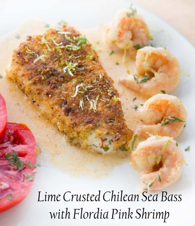 overhead view of Crusted Chilean Sea Bass with a row of shrimp and the edge of tomato slices with a light sauce on a white plate