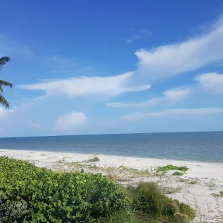 Sanibel and Captiva , A locals guide to Florida