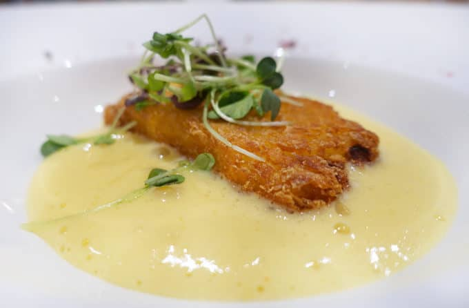fried mascarpone appetizer in a cream sauce on a white plate with a spout garnish