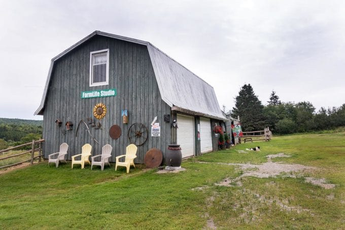 barn with chairs outside on the fundy studio tour