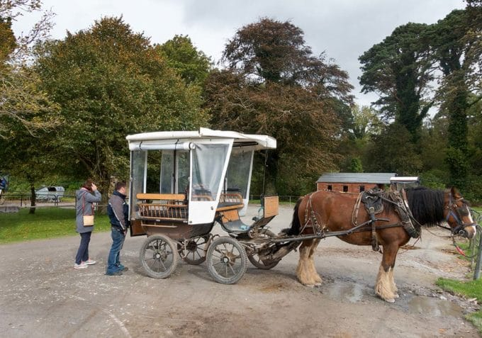 people standing outsdie of a horse and carriage known as Jaunting Cars in Ireland