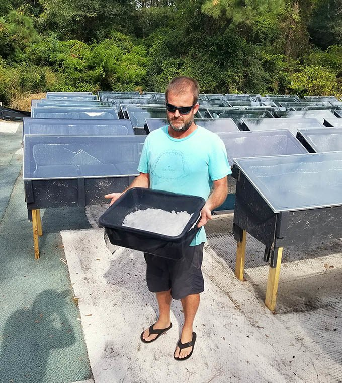 man holding bin of sea salt, standing by salt drying stations in the Outer Banks