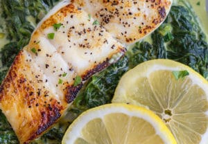 pan seared halibut on a bed of creamed spinach with a partial view of 2 lemon slices