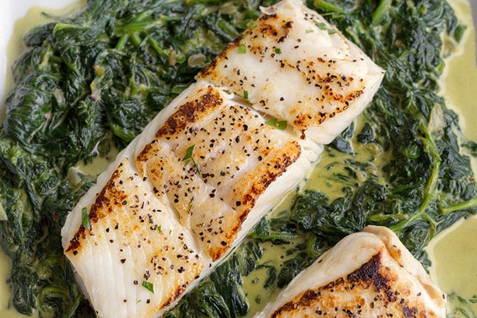 pan seared halibut sitting on a bed of creamed spinach