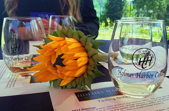 glass of white wine next to a partially closed sunflower sitting on a menu