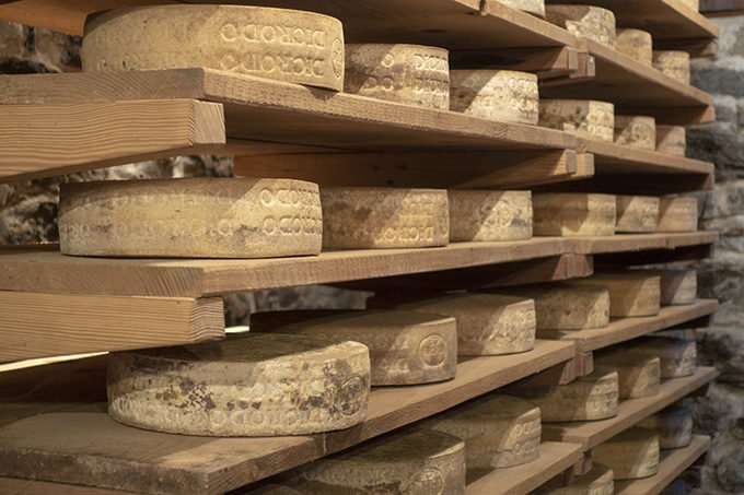 wheels of cheese stored on wooden shelves