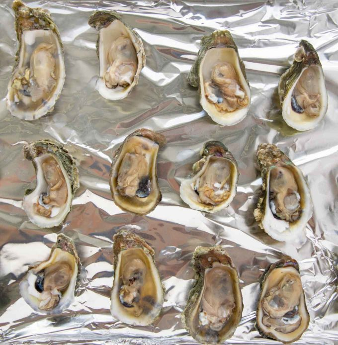 opened oysters on a foil lined pan