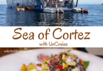 pinterest image for sea of cortez cruise