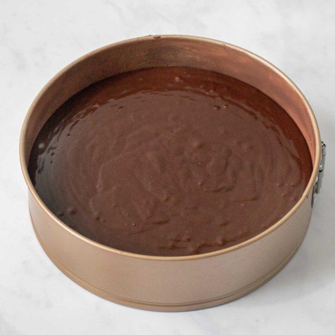 cake batter in prepared springform pan