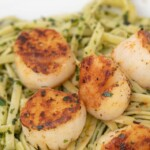 Pan Seared Scallops with Linguine al Pesto